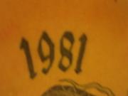 1981年11月26日生まれ