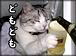 ☆岡山☆倉敷☆飲み会しよ☆