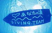 ダイビングチーム あなたの清