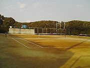 堺東高校硬式テニス部!!