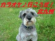 カラオケ♪行こうぜ! 北九州