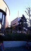 上智大学 社会福祉学科2011