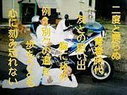嘉悦大学2008年度4月入学生