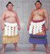 大相撲 日本人横綱待望委員会