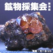 鉱物採集会(東海版)