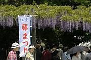 江南ラボな83's(*´д`*)