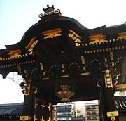 柚坊主のアスパラ本願寺(仮)