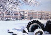 清瀬第八小学校
