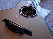 tupli guitar (テュプリ)