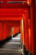 映画を撮ろう!in京都