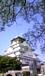 ウォーキングin大阪城
