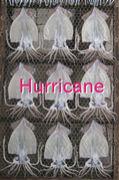 :Hurricane