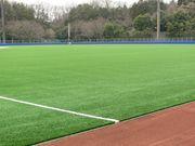 日本体育大学硬式野球部