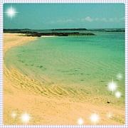 リゾートバイトin南の島