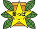 葉っぱの会(´・ω・`)