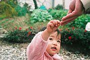 食育とは親から子へ伝えること