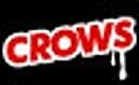 TEAM  福岡CROWS