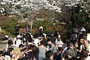 国際交流&イベント情報 in京都
