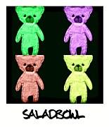 saLadbowL サラダボウル