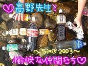 ♥高野クラス 2003♥