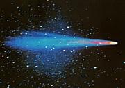 エレーニン彗星(Comet Elenin)