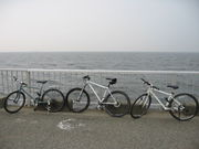 みんなの自転車ツーリング関東