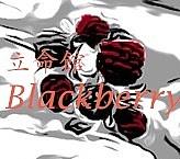 立命館BlackBerry