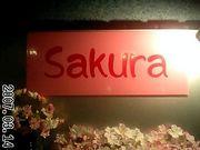 SAKURA友の会