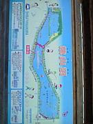 埼玉の柴山沼で釣りをする人たち