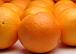 オレンジの会に憧れる会