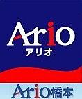 アリオ橋本