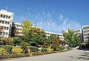 2013年 梅花女子大学 新入生