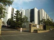 2013年 大阪経済法科大 新入生