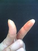 指がご馳走p(^Q^)q