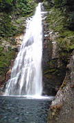 滝の会(自然と会話)
