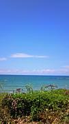 海好きin福岡