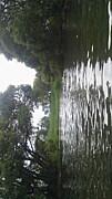 琵琶湖ウェーディングハンターズ