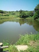 群馬in〜野池でバス釣り〜