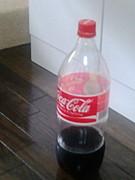 コーラとポテトチップスが合う!