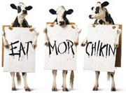 Chick-fil-A * EAT MOR CHIKIN