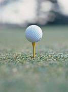 ゴルフ大好きな人集まれ!
