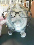むしろ僕はメガネ