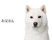 09 広告業界内定者