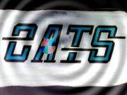 バスケットボールチーム CATS