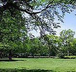 【オフ会】一緒に公園でランチ