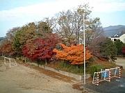 京都市立 北野中学校