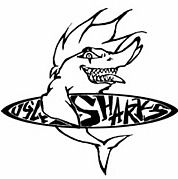 Ugly Sharks〜愛知の海好き〜