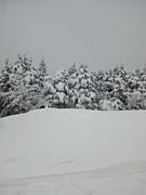 スノーボード交流