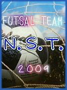 蹴球チーム『N.S.T.』