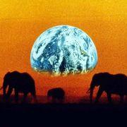 地球交響曲 @ O-EAST&WEST